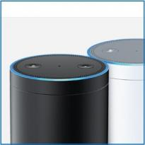 Alexa Printers