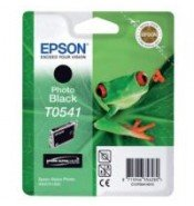 Epson T0541 Photo Black Ink Cartridge (13ml) C13T05414010
