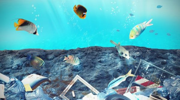 HP environmental schemes reduce plastic in the oceans