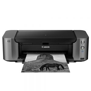 Canon PIXMA Pro 10S Image