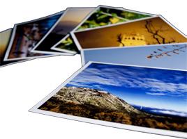 Great Printers for Printing on Card | Printerbase