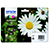 Epson Expression Home XP-202 T1806 Standard Yield CMYK Ink Cartridge Pack
